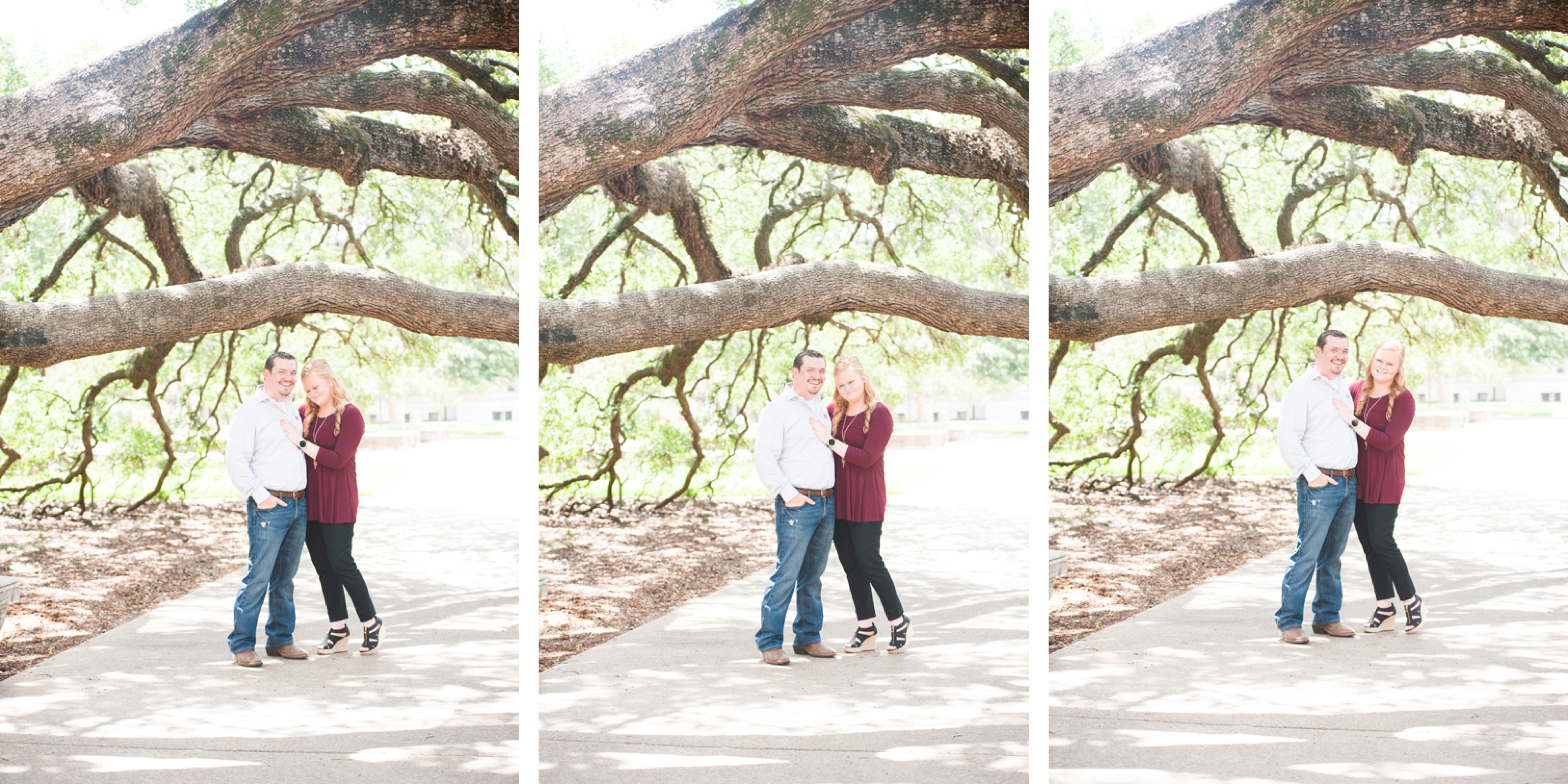Ashley + Kyle, Texas A&M Century Tree surprise proposal, College Station, TX. www.imaniphotog.com